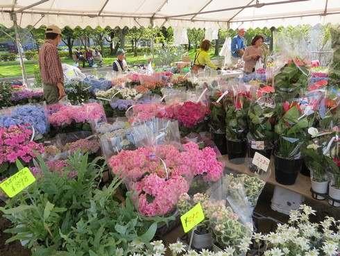 広島でグリーンフェア、花に包まれるイベント
