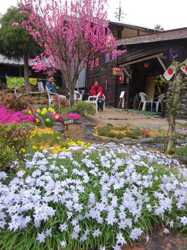 庄原市の児玉庭 園内の様子