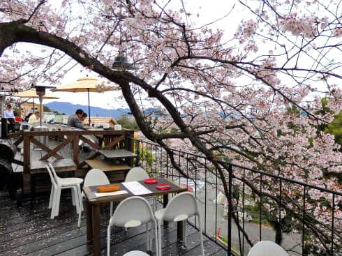 マホガニー、桜と広島市内が見渡せる「ステーキとコーヒーの店」
