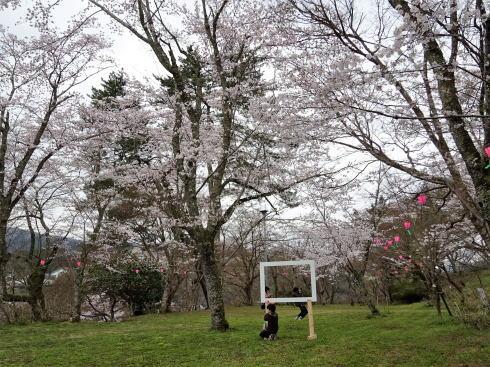 尾関山公園 桜の写真スポットフレーム
