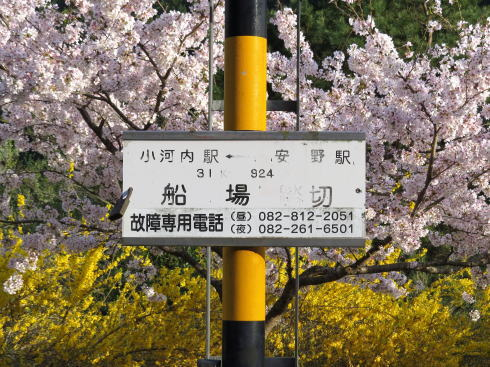 安野花の駅公園 近くの踏切
