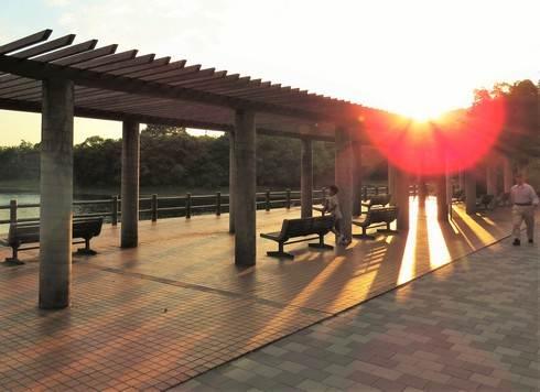 福山市 春日池公園、ベンチも沢山