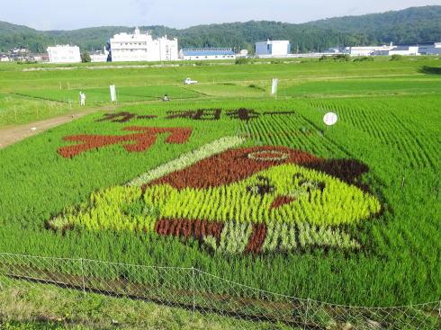 カープ坊やの田んぼアート!広島県三次市で日本一祈願