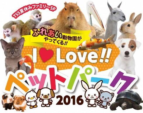カピバラなど50種の動物と触れ合える!I LOVEペットパーク、広島産業会館で開催