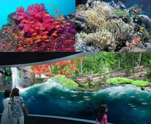 マリホ水族館 完成イメージ