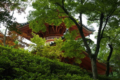 三瀧寺 境内の多宝塔