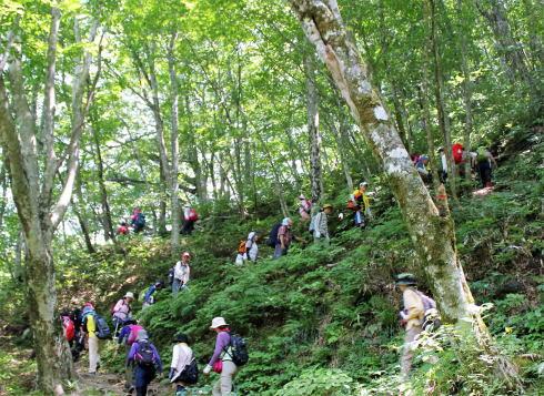 庄原 比婆山登山・トレッキングの様子7