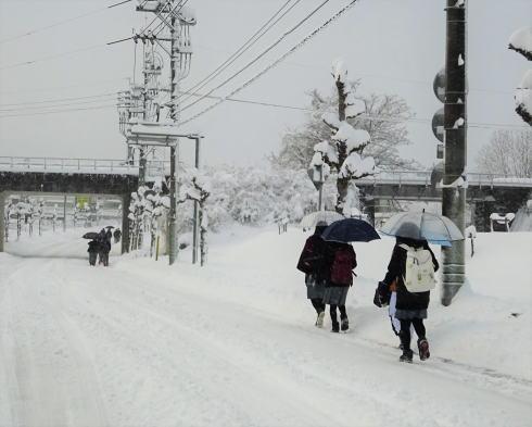 2017年1月15日 広島県庄原市の雪の様子