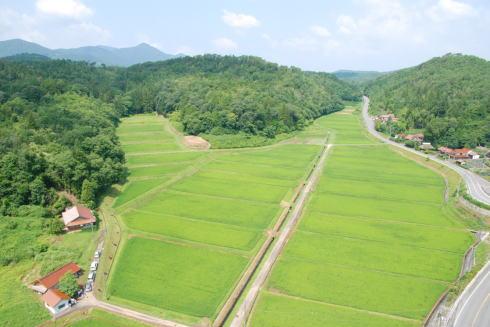 豊栄町の田園風景/豊栄プロジェクト