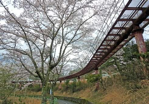 土師ダム サイクル列車の通路