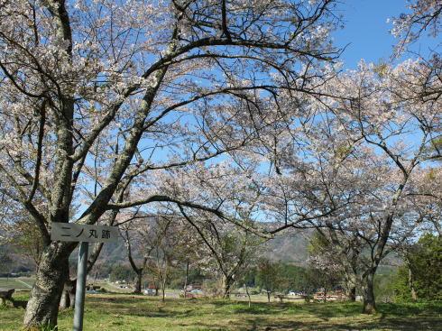 小奴可の要害桜 近くの城跡