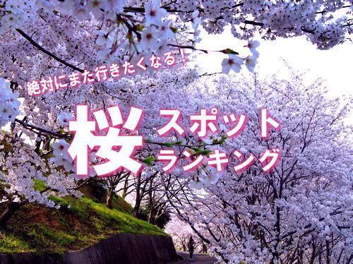 【厳選】広島の桜スポットランキングBEST10!
