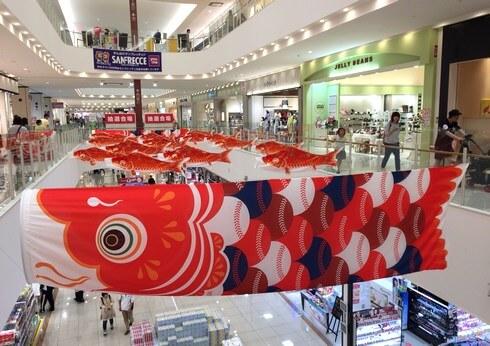 鯉の季節!広島カープを応援する 鯉のぼりの風景