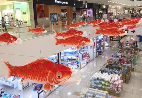 広島カープを応援する 鯉のぼり、ゆめタウン廿日市にて赤い鯉のみ