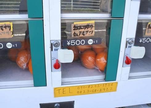 ミカンの自動販売機