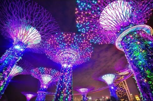 シンガポールのガーデンズ・バイ・ザ・ベイ