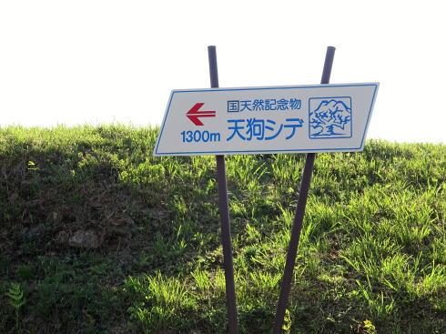 北広島町 テングシデの看板