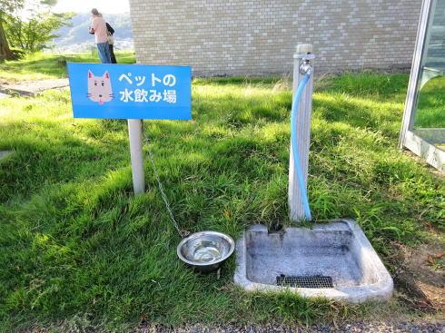 七塚原サービスエリア ドッグランあり