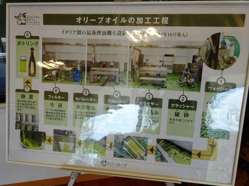 江田島オリーブファクトリー ショップの様子2