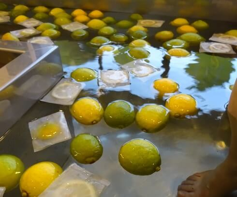 広島レモンが浮かんだ足湯
