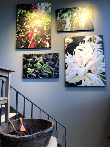 宮島 スターバックスコーヒー厳島表参道店 店内2階への階段