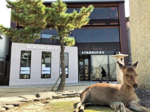 宮島にスタバ 厳島表参道店、世界遺産を臨む初店舗がオープン!しゃもじアートも