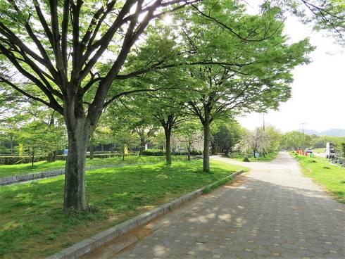 中央公園03