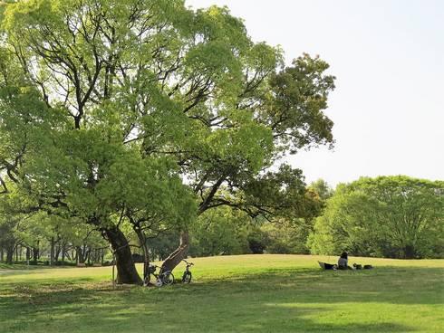 中央公園05