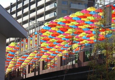 マツダスタジアムが10周年で、傘まつりと紙花まつり開催
