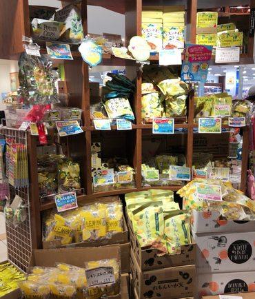 カルディ レモン商品コーナー