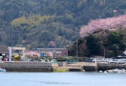 佐木港と港の丘公園