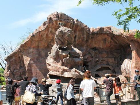 安佐動物園 9月1日開園記念イベント・ナイトサファリ開催