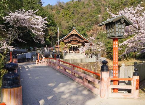 桜咲く春の大頭神社と別鴉橋