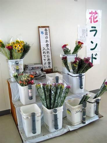 江田島中町港10