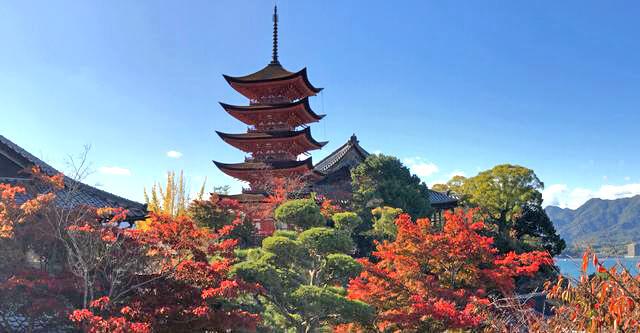 秋色に染まる宮島、島内の紅葉スポットが見頃へ