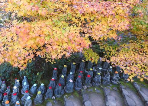大聖院、紅葉の下には地蔵が並ぶ