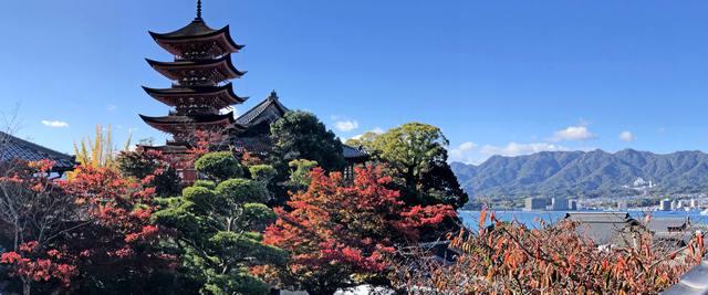 宮島の紅葉スポット・五重塔や千畳閣パノラマ