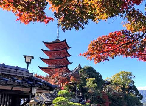 宮島の紅葉スポット・五重塔や千畳閣