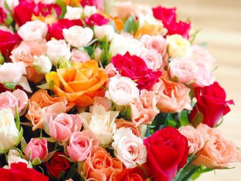 植物公園 バレンタインフェスティバル、石臼チョコづくりに99本のバラと撮影も
