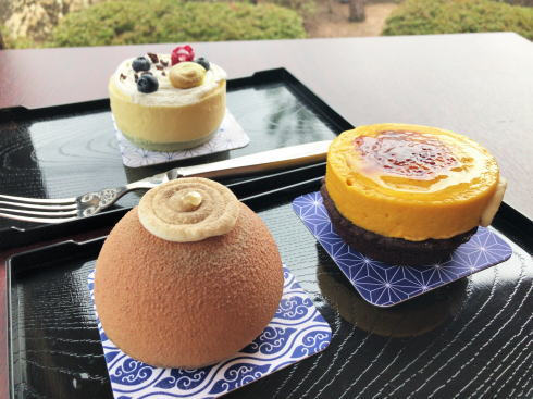 カカオ果 ケーキ