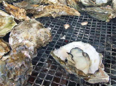 牡蠣の無料試食も!大竹駅前商店街で「かきまつり」