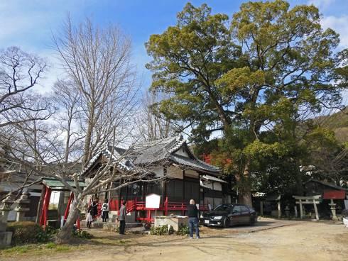 大島神社と周りの風景