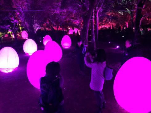 「チームラボ 広島城 光の祭」開催時の写真2