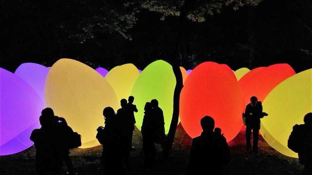 「チームラボ 広島城 光の祭」開催時の写真3