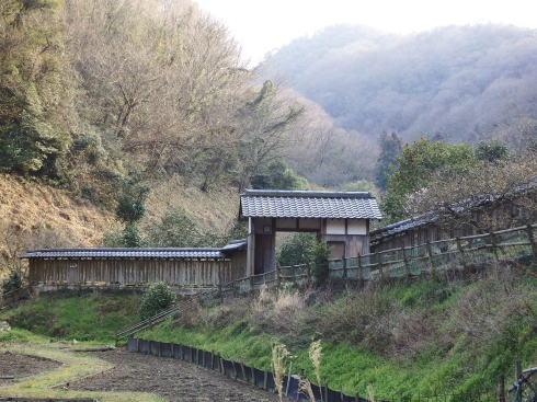 広島県福山市 平家谷つばき園 画像7