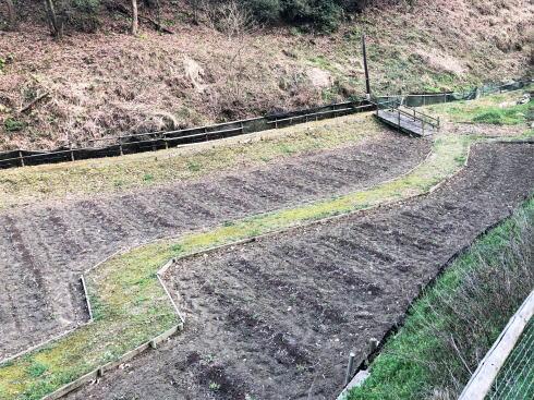 広島県福山市 平家谷つばき園 画像6