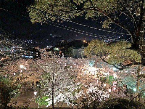 尾道 千光寺公園、尾道水道と夜桜