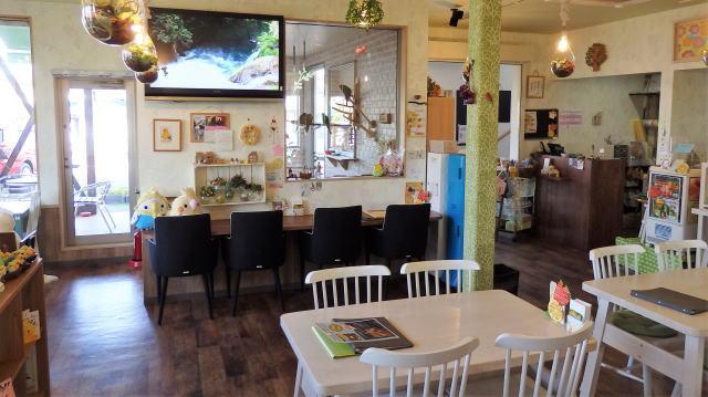 福山市 カフェことり日和 店内の様子