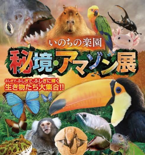 不思議なアマゾンの生き物たち約60種!広島で「アマゾン展」開催