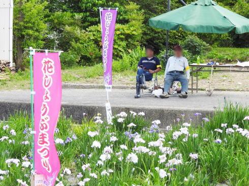 向原花しょうぶ園 菖蒲まつりの様子4